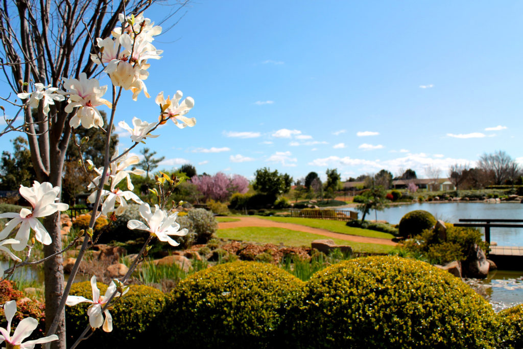 Take A Weekend Trip To Dubbo